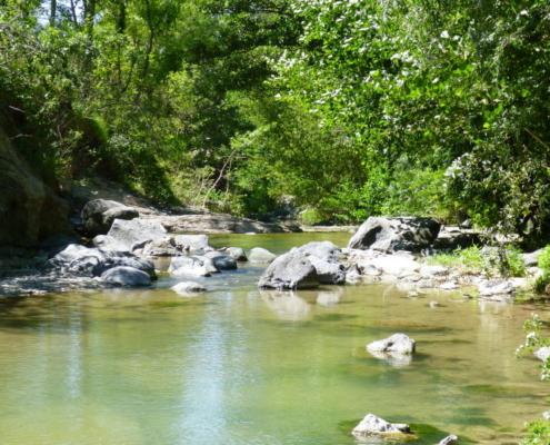Accueil de groupes en Ardèche méridionale